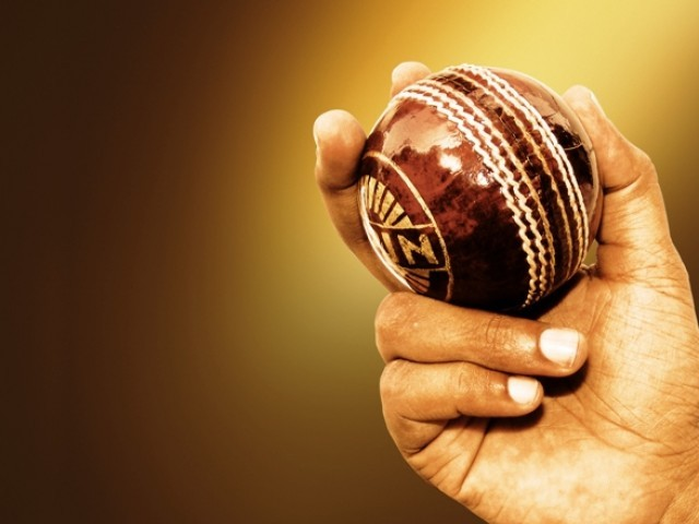 Young cricketers: Sowing the seed for a better future – The ...