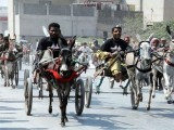 Donkey cart races are organised by the Karachi South Donkey-Cart Association (KSDCA) which has over 800 owners registered with them. PHOTO: PPI