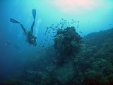 There is a total sense of total tranquillity and peace underwater.