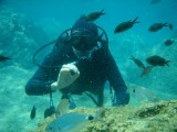 Fish traveling in shoals moved so close to me that I could touch them with my hands.