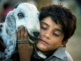 A teenager hugs his goat at a livestock market. PHOTO: AFP