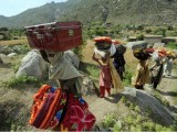 Displaced Pakistani people leave from Buner on May 8, 2009 during a military operation. PHOTO: AFP