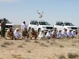 Saudi prince goes on a hunting spree in Pakistan and kills 2100 houbara bustards. PHOTO: REUTERS