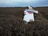 Wreckage near the town of Shaktarsk, in rebel-held east Ukraine. Photo: AFP