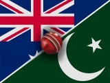 I feel that Pakistan has what it takes to give the relatively young New Zealand side a run for their money. Against Australia, however, chances of survival seem slim.
