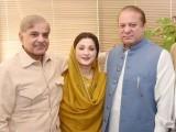 PML-N leaders celebrate SC verdict. PHOTO: TWITTER