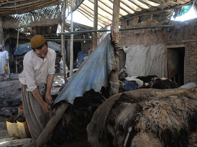 bakra mandi – The Express Tribune Blog