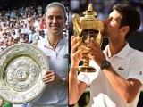 Novak Djokovic and Angelique Kerber's performance at SW19 alone is enough to gauge the magnitude of their achievement.