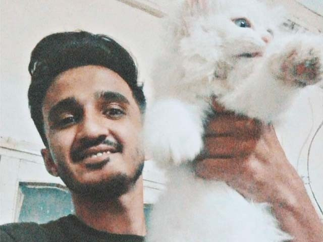 Amid this spectacle of hate for fellow human beings, it will perhaps be very difficult to garner empathy for a poor little kitten that was strangled to death. PHOTO: JIBRAN NASIR/ TWITTER